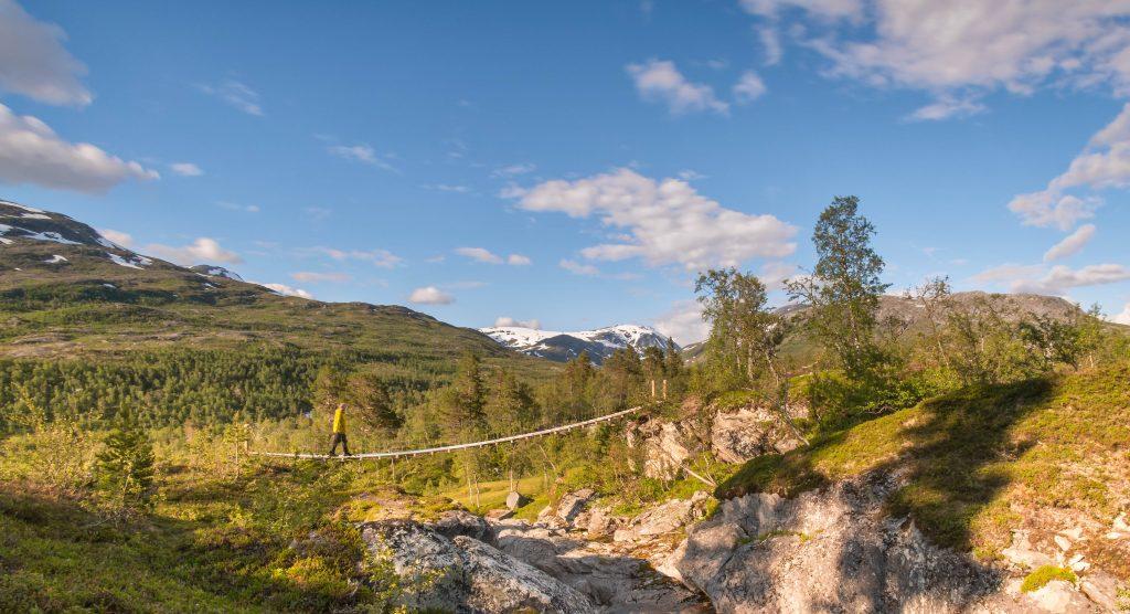 Børgefjell-nasjonalpark