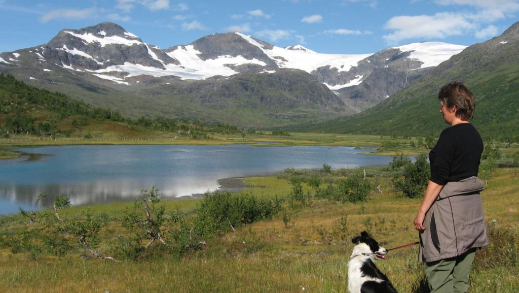 Turgåer med hund ved fjellvann og Okstindan med isbre i bakgrunn