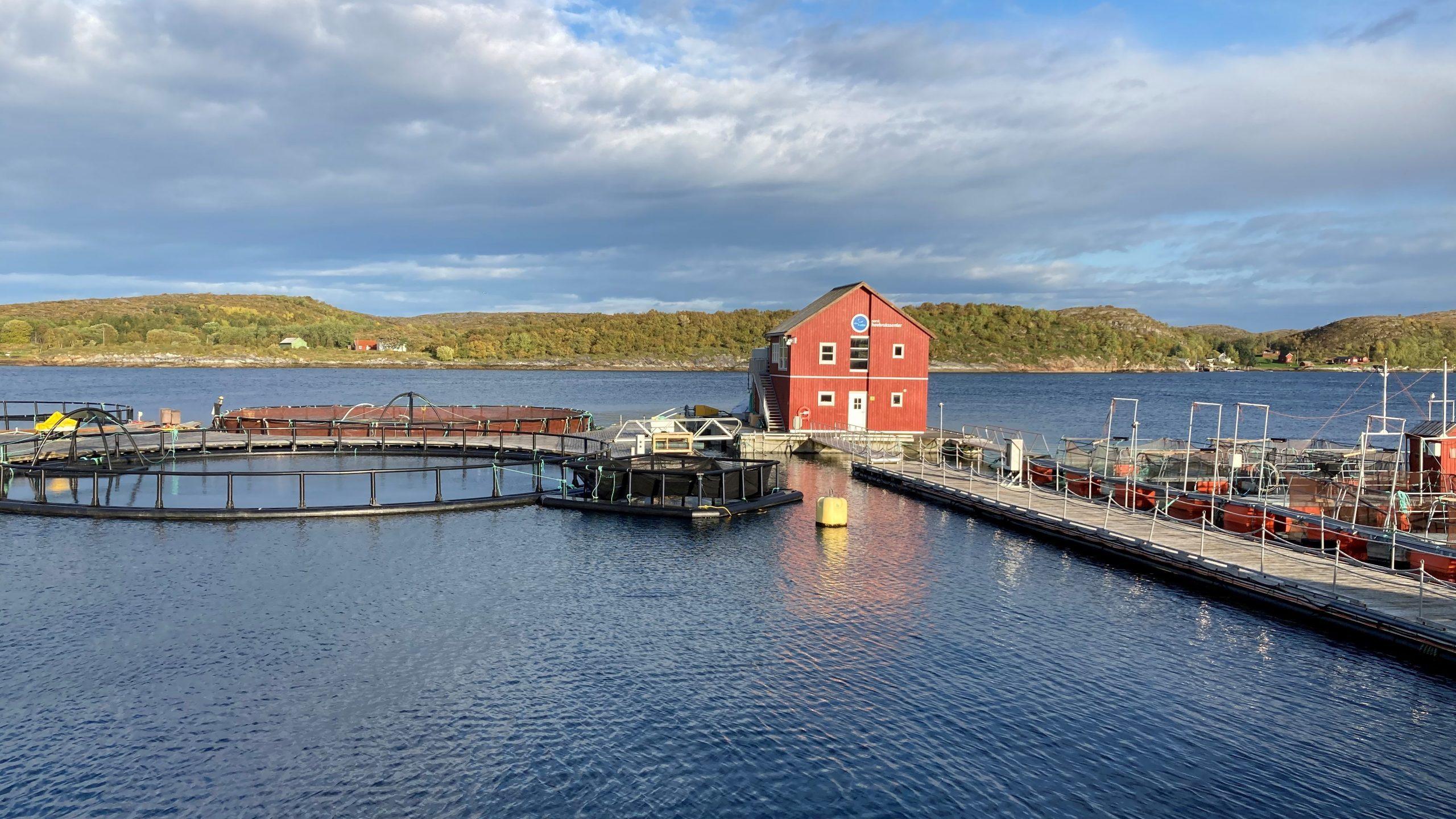 Norsk Havbrukssenter-utsikt mot merdene